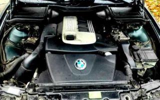 Двигатели m51d25, m51d25tu bmw: технические характеристики, надежность и проблемы